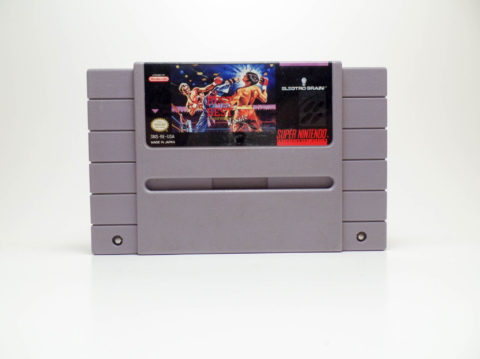 Best of the Best: Championship Karate (Super Nintendo)