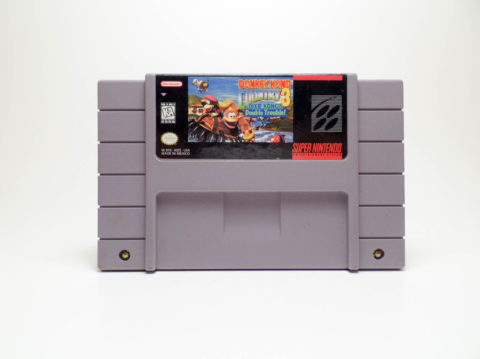 DKC3: Dixie Kongs Double Trouble (Super Nintendo)