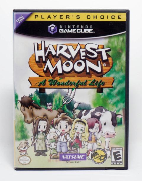 Harvest Moon: A Wonderful Life (Gamecube)
